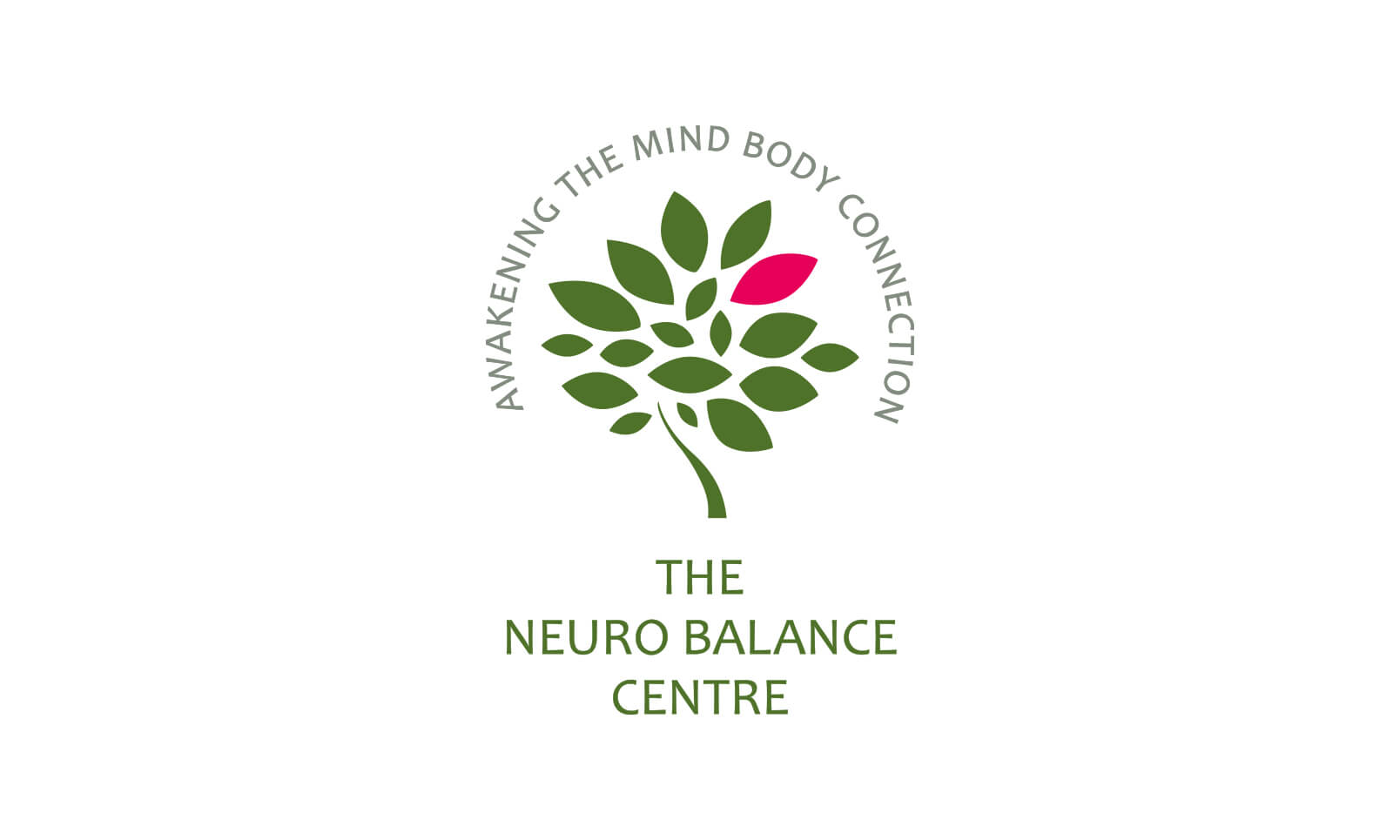 The Neuro Balance Centre